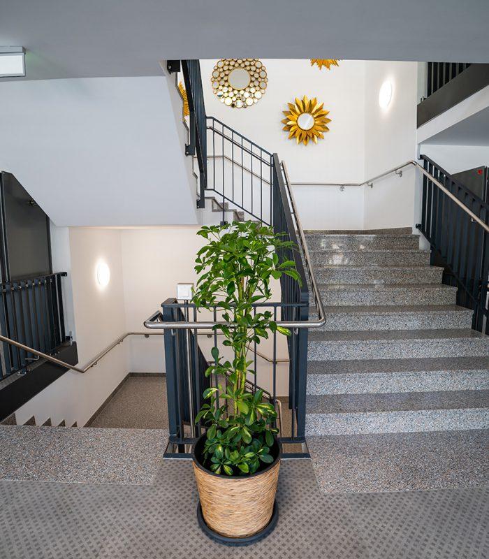 Treppenhaus mit Wandeko im Pflegeheim Blumberg